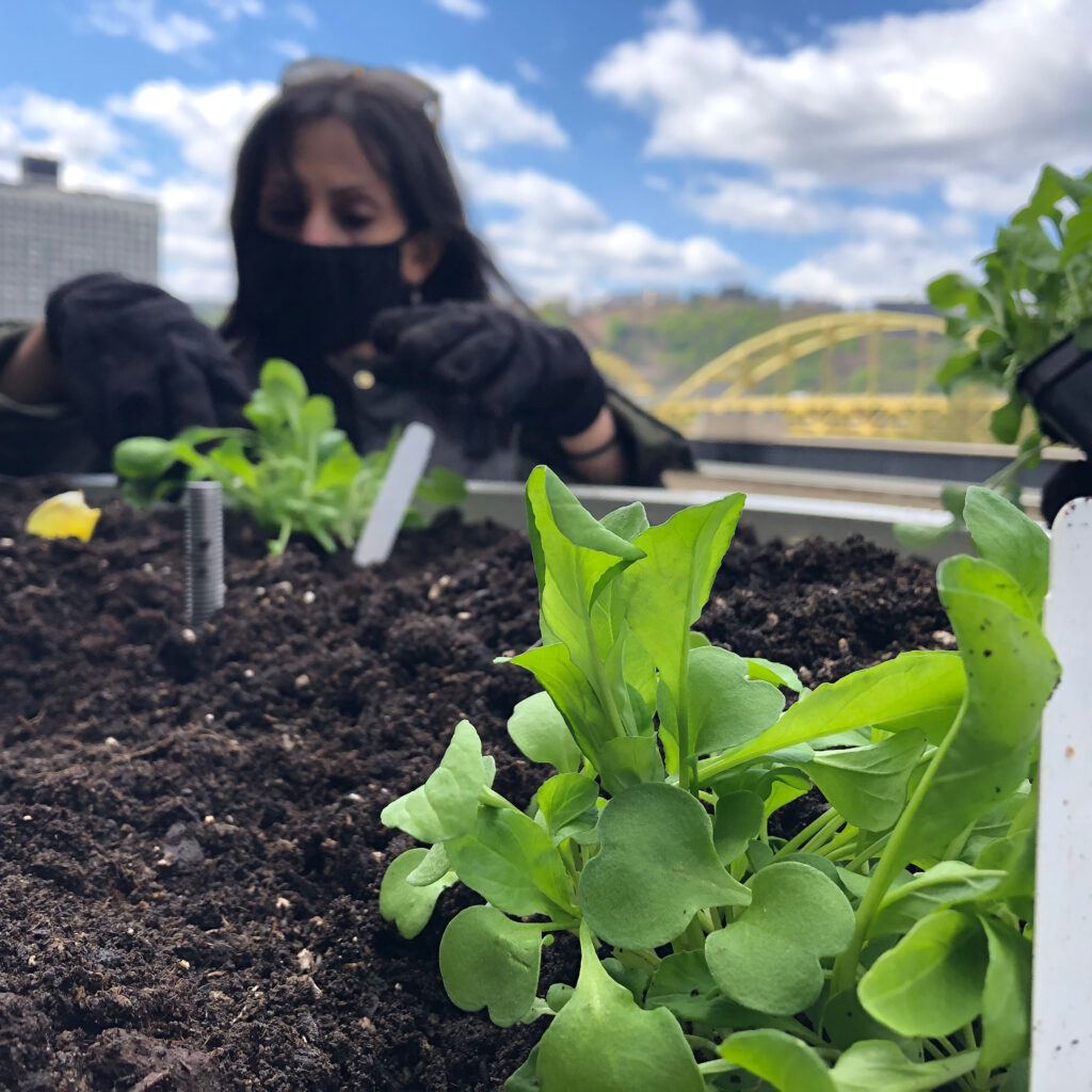 Pittsburgh Pirates, Duquesne Light Partner for Green Initiatives at PNC Park